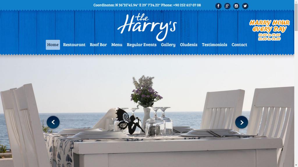 Tan ajans Fethiye Harrys Restaurant web tasarımı